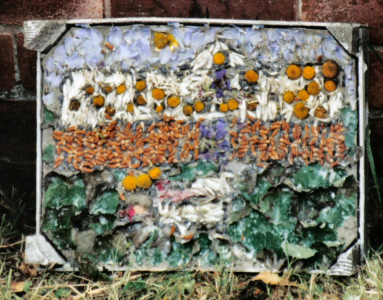 Old Tupton 2002 - Royal Oak Well Dressing (3)