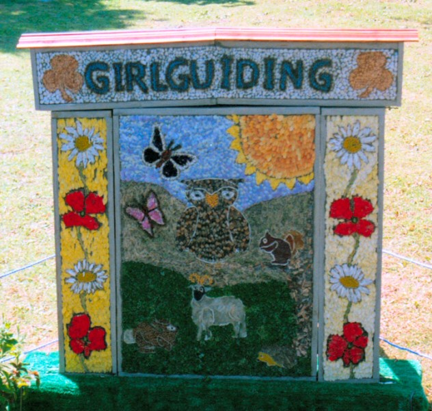 Dronfield Woodhouse 2005 - Brownies & Guides Well Dressing