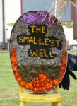 The Smallest Well Dressing