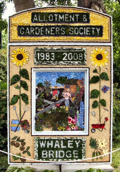 Whaley Bridge 2008 - Canal Basin Well Dressing