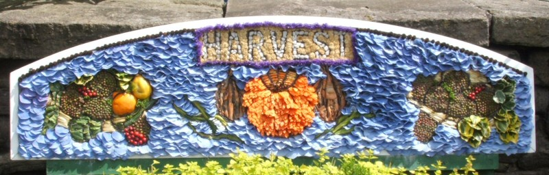 Whaley Bridge 2008 - Additional Well Dressing at Canal Basin (Harvest)