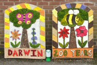Federation of Infants Schools Well Dressing