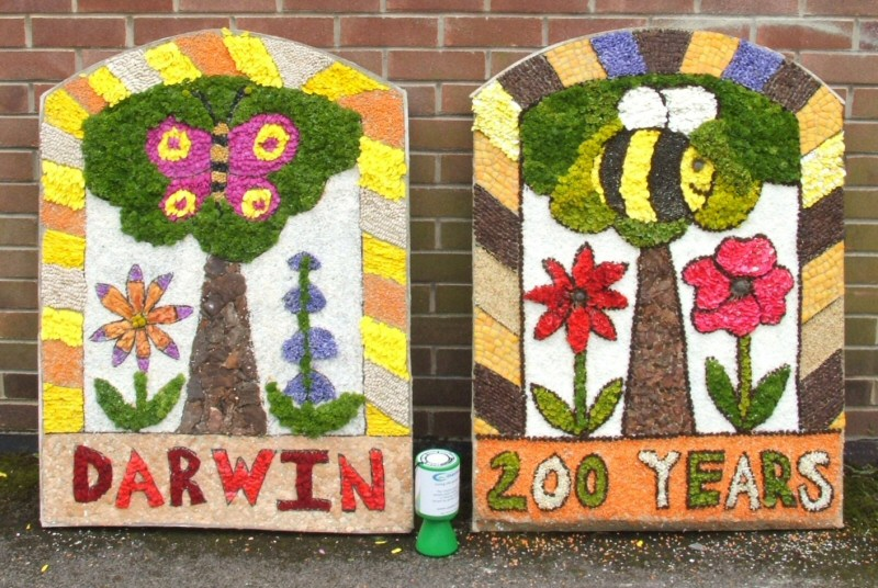 Wirksworth 2009 - Federation of Infants Schools Well Dressing