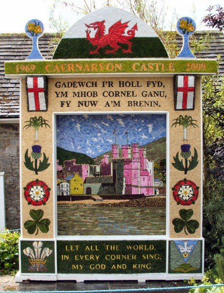 Tideswell 2009 - Village Well Dressing