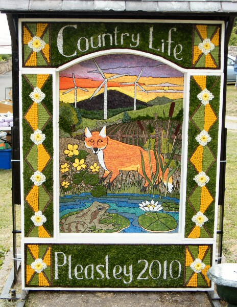 Pleasley 2010 - Main Well Dressing
