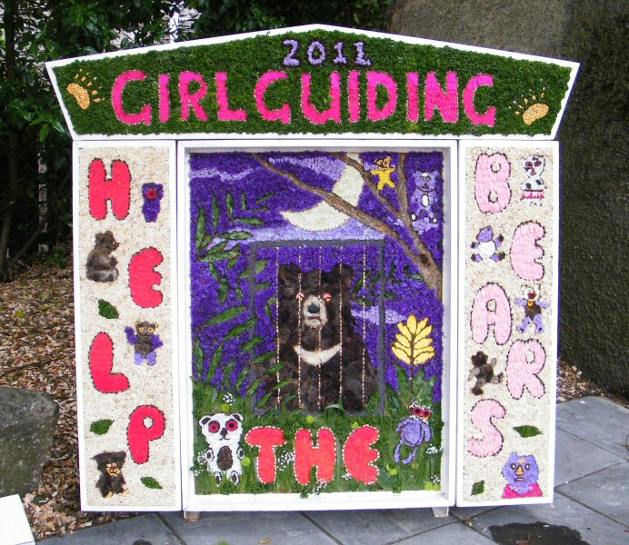 Tideswell 2011 - Brownies & Guides Well Dressing