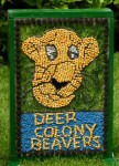 Scouts & Beavers Well Dressing (3)