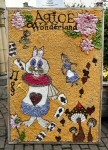 Additional Well Dressing (4)