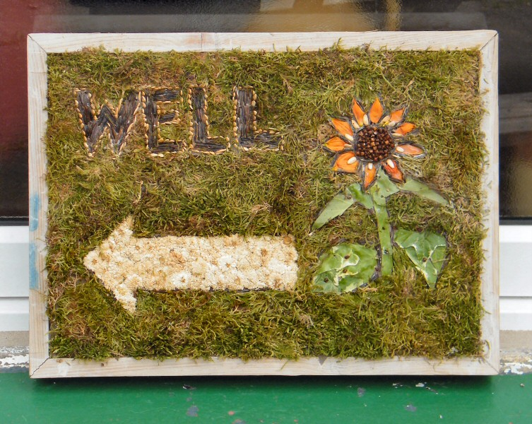 Buxworth 2013 - Additional Well Dressing
