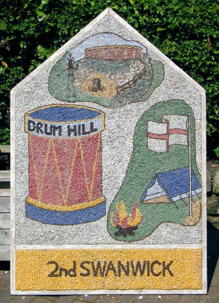 Swanwick 2014 - Scouts Well Dressing