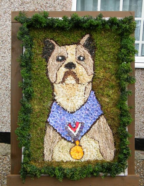West Hallam 2014 - Jane & Neve Metcalf's Well Dressing