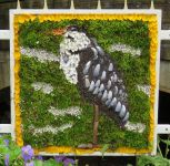 Blue Grass Purple Cow Well Dressing