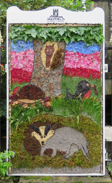 Hayfield 2016 - Hayfield Primary School Well Dressing