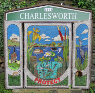 Village Well Dressing (1)